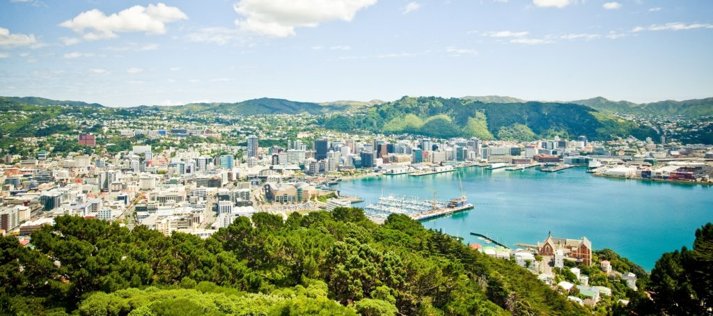 mount-victoria-view-wellingtonnz-CROP
